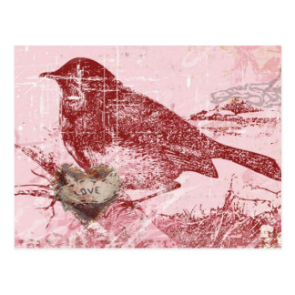 Rosa Liebe-Vogel Postkarte