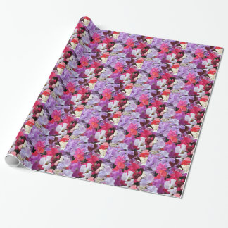 Rosa-, Lila u. weißeder süßen Erbse Blumen in der Geschenkpapier