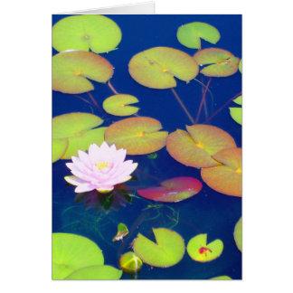 Rosa Lotos-Blume, die mit Lilienauflagen auf Teich Karte