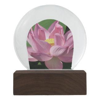 Rosa Lotos-Blume IV Schneekugel