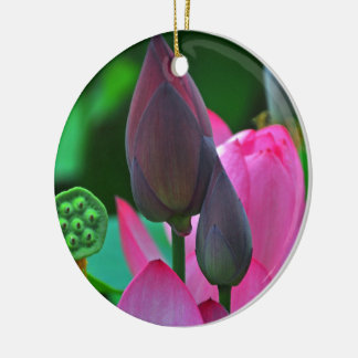 Rosa Lotos-Blüten-Keramik-Verzierung Rundes Keramik Ornament