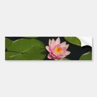 Rosa Lotos-Wasserlilie Autoaufkleber