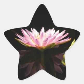 Rosa Lotos-Wasserlilie Stern-Aufkleber