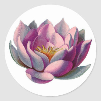 Rosa Lotus-Blüte Runde Aufkleber