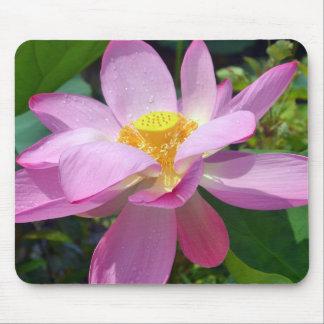 Rosa Lotus Mousepad