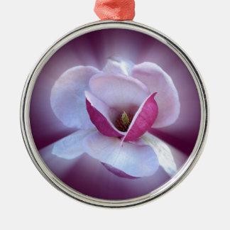 rosa Magnolienschatten Silbernes Ornament