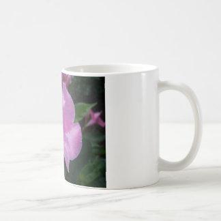 Rosa Mandevilla Kaffeetasse