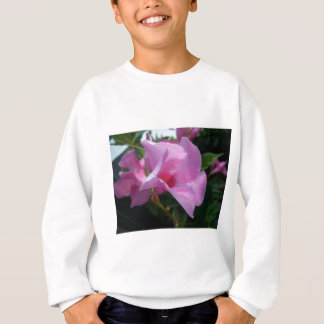 Rosa Mandevilla Sweatshirt