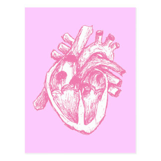 Rosa menschliches Herz Postkarte