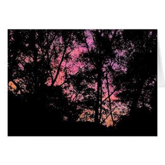 Rosa Mimosen-Himmel Karte