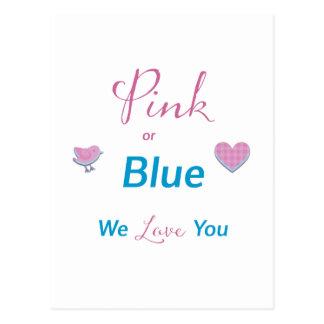 Rosa oder Blau Postkarte