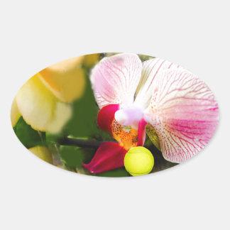Rosa Orchidee mit Tennisball Ovaler Aufkleber