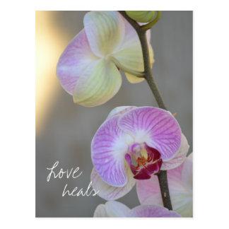 Rosa Orchideen-Ausdruck-Liebe heilt Postkarte