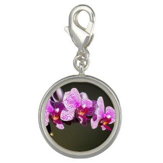 Rosa Orchideen Foto Anhänger