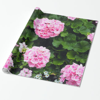 Rosa Packpapier der Pelargonie-185