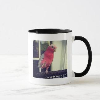 Rosa Papageien-Tasse Tasse