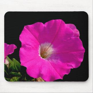 Rosa Petunie-Blume Mousepad