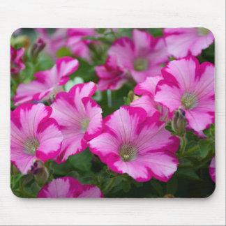 Rosa Petunie-Blumen Mousepad