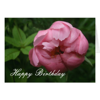 Rosa Pfingstrose alles Gute zum Geburtstag Karte