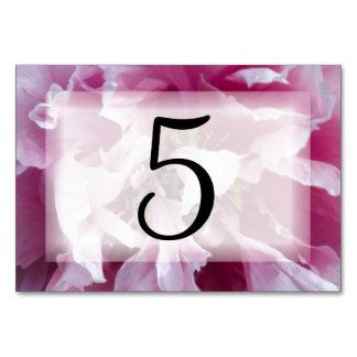 Rosa Pfingstrosen-Blumen-Tischnummern Karte