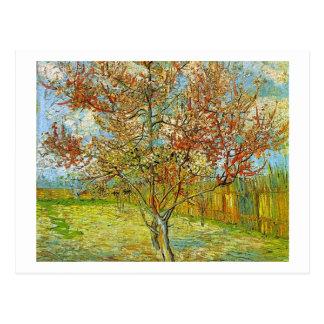 Rosa Pfirsich-Baum in der Blüten-Erinnerung der Postkarte