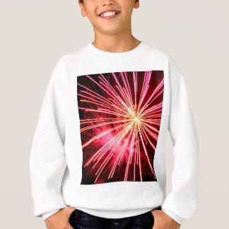 Rosa Punkte Sweatshirt