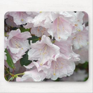 Rosa Rhododendron-Blumen in der vollen Blüte Mousepad