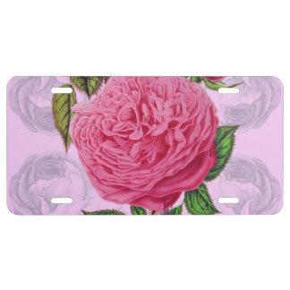 Rosa romantische Rose US Nummernschild