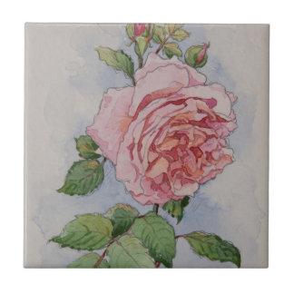 Rosa Rose 5337 Keramikfliese