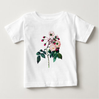 Rosa Rose Adelaides D'Orleans durch Pierre Redoute Baby T-shirt