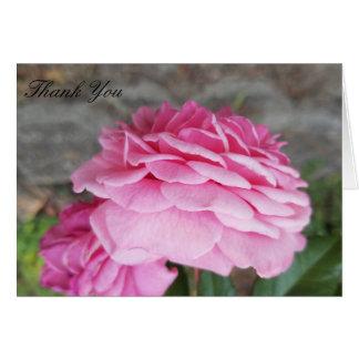 Rosa Rose danken Ihnen Karten