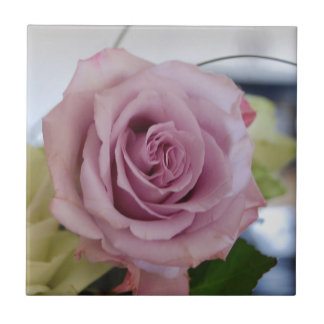 rosa Rose Fliese