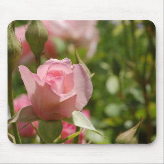 Rosa Rose Mousepad