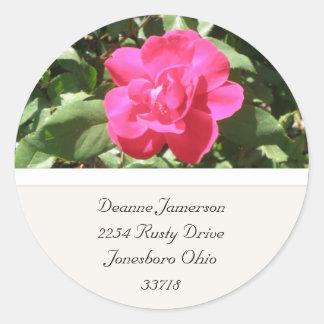 Rosa Rosen-Adressen-Aufkleber Runder Aufkleber