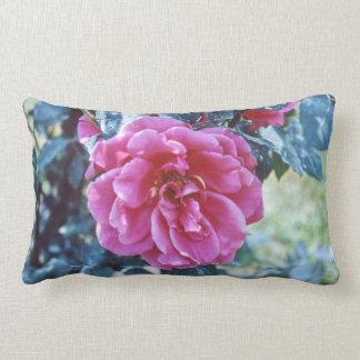 Rosa Rosen-Blumen-Gartenhübscher Chic-mit Lendenkissen