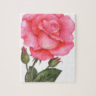 Rosa Rosen-botanische Illustration Puzzle