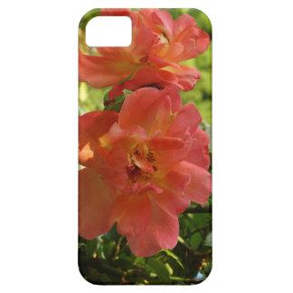 Rosa Rosen-Foto iPhone Se + iPhone 5/5S Schutzhülle Fürs iPhone 5
