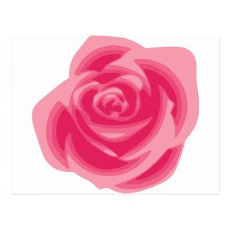 Rosa Rosen-Licht Pastelle rosa empfindliche Blume Postkarte