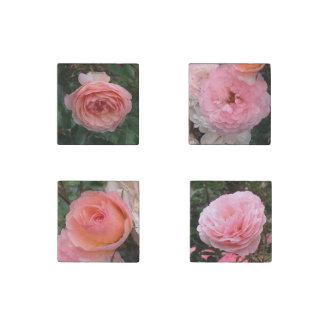 Rosa Rosen-Magneten Steinmagnet