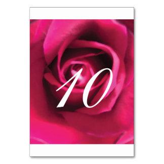 Rosa Rosen-Tischnummer Karte