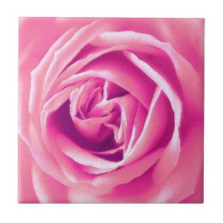 Rosa Rosendruck Fliese