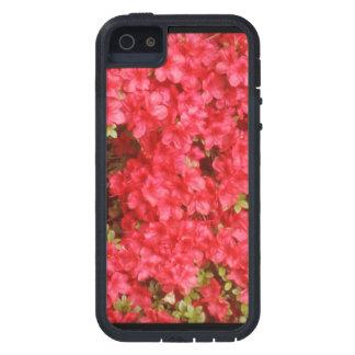Rosa/rote Blumen Tough Xtreme iPhone 5 Hülle