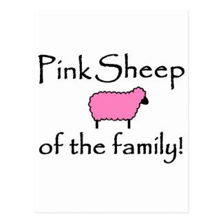 Rosa Schafe der Familie Postkarte