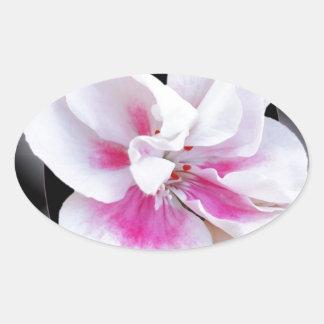 Rosa Schatten Ovaler Aufkleber
