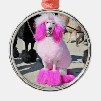 Rosa Standardpudel des Pudel-Tag2016 - Barnes - Rundes Silberfarbenes Ornament