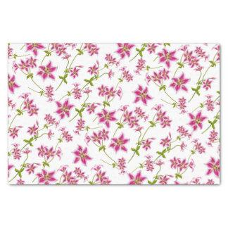 Rosa Stargazer-Lilien-Blumenseidenpapier Seidenpapier