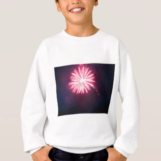 Rosa Strahlen Sweatshirt