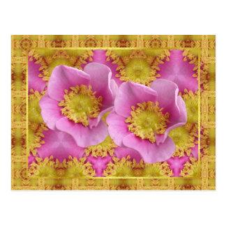 Rosa Strauch-Rosen Postkarte