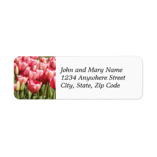 Rosa Tulpe-Garten-BlumenRücksendeadresse-Aufkleber