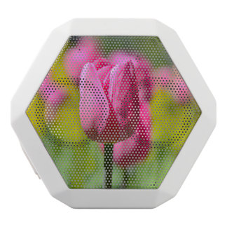 Rosa Tulpe im Garten Weiße Bluetooth Lautsprecher